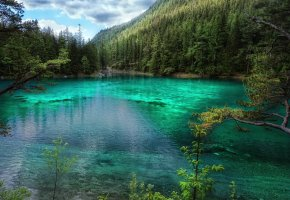 Обои Зеленое озеро, озеро, Австрия, лес, деревья