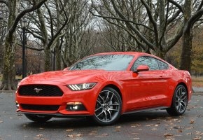 ���� ford, mustang, coupe, ����, �������, �������