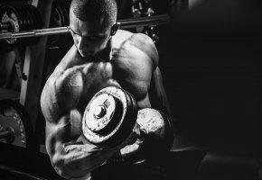 Обои парень, сила, мужественность, спорт, штанга, гантели, пауэрлифтинг, powerlifting