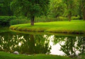 Обои река, парк, газон, трава, деревья, лето