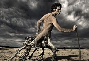 Обои мужчина, пустыня, корни деревьев, торс, скорость