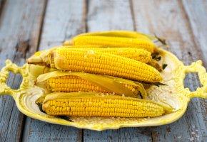 Обои тарелка, Еда, кукуруза, желтый, злаки