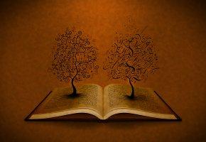Обои книга, деревья, буквы, книга, фон, корни, символы