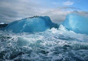 Обои айсберг, океан, пингвины, лед, облака, волны, брызги