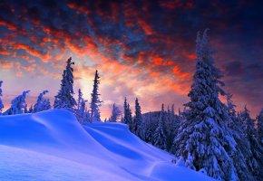 Обои зима, лес, небо, облака, закат, снег, горы