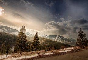 Обои деревья, горы, вершины, снег, солнце, облака, небо, дорога, склон, пейзаж
