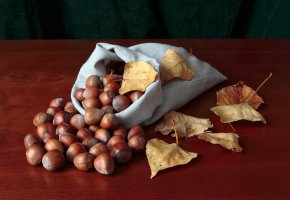 Обои орехи, мешок, осень, урожай, листья