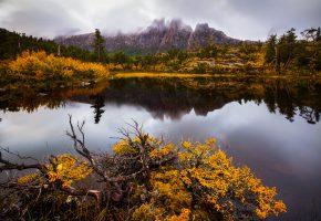 Обои горы, гора, деревья, осень, вода, озеро, ветки