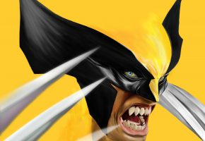 Обои wolverine, James Howlett, Marvel Comics, X-Men