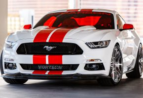 ���� Ford, Mustang, Carbon, ����, �������, �����