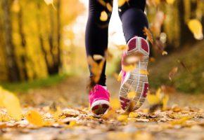 Обои exercise, jogging, running shoes, бег, листья, кроссовки