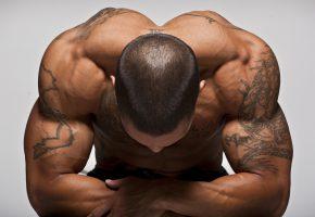 Обои мужчина, спина, загар, тату, мышцы, тело, рельеф