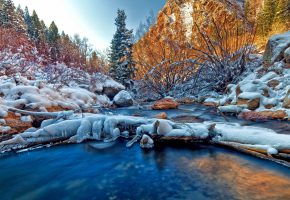 Обои река, лес, ели, снег, лед, камни, деревья