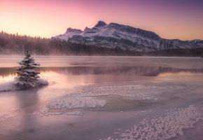 Обои озеро, лед, горы, ёлка, утро