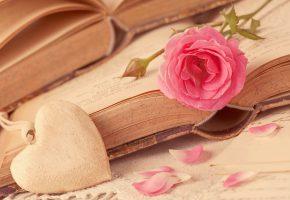 Обои книга, страницы, сердце, амулет, роза, лепестки