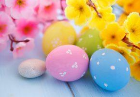 Обои eggs, flowers, spring, Пасха, яйца, цветы