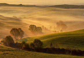 Обои Италия, Тоскана, весна, утро, золотой свет, холмы, деревья, поля, туман