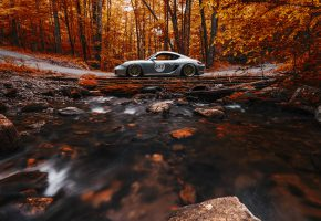 Обои Porsche, Cayman, Stance, Works, Forest, Orange, Side, View