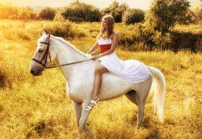 Обои девушка, взглялд, профиль, белое платье, лошадь, животное, природа, небо