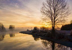 Обои река, дерево, туман, пейзаж, утро
