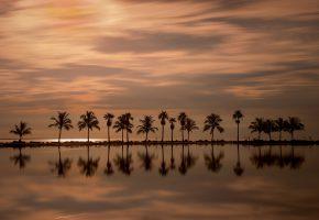 Обои вечер, пальмы, Miami, Florida, Майами, Флорида, океан, закат, отражение, гл ...