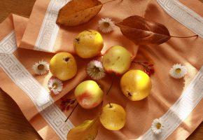 Обои натюрморт, фрукты, груши, яблоки, салфетка, осень, листья