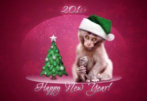 Обои елка, обезьяна, 2016, снежинки, шапка, звезда, открытка