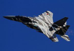 Обои F-15DJ, истребитель, ВВС, Япония, полет