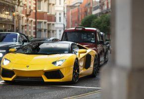 Обои Ламборджини, авто шик, красота, авто, спорткар