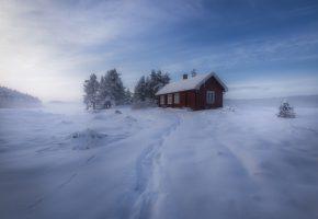Обои Норвегия, зима, снег, домик, деревья