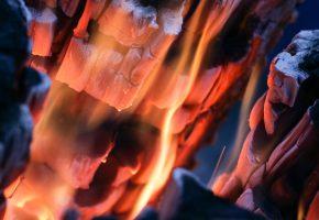 Обои огонь, костер, угли, жар, пепел