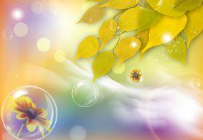 Обои осень, листья, цветы, блики, фон