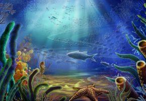 Обои океан, морское дно, рыбы, кораллы
