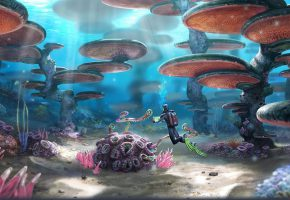 Обои Subnautica, кораллы, песок, океан, наросты, аквалангист