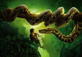 ���� The Jungle Book, Jungle, Book, Snake, Wood, Forest, ����� ��������, ����, �����, �������