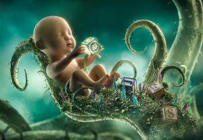 Обои ребенок, растение, кубики, рост, взросление, развитие