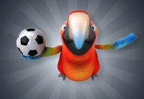 Обои Птица, Попугай, Футбол, Клюв, Мяч, 3D, Графика