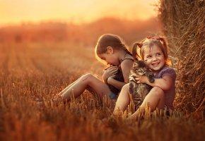 Обои дети, девочки, котята, настроение, радость