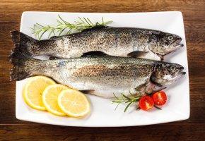 Обои рыба, лимон, розмарин, помидор, форель