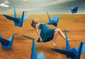 Обои девушка, журавли, фон, поле, платье, ножки