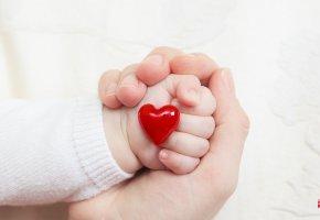 Обои рука, ребенок, сердце