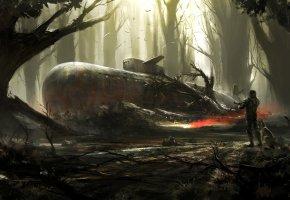 Обои Find in the woods, лес, подводная лодка, человек, птицы