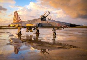 Обои F-5N, Tiger, смолёт, оружие, авиация, взлетная полоса