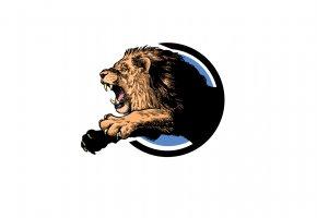 Обои лев, пасть, рык, лапы