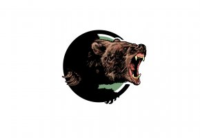 Обои медведь, морда, пасть, рык, клыки