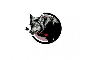 Обои волк, морда, пасть, стрела
