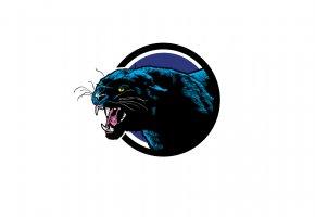Обои пантера, морда, пасть, рык, клыки