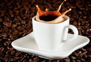 Обои эспрессо, всплеск, напиток, кофе, пена, брызги, зерна