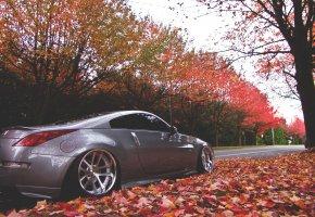 Обои nissan, дорога, природа, осень, листья