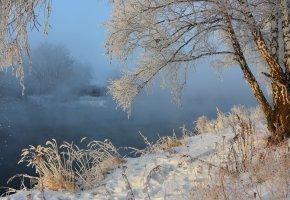 Обои река, берёза, туман, снег, пейзаж, зима
